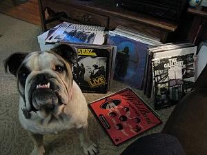 Rosie & Records