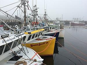 Dennis Point Wharf - Xander Nelson